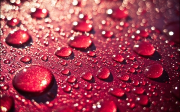 7014536-red-water-drops